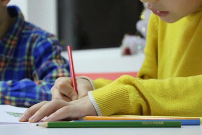 Ripresa delle attività didattiche per gli alunni fragili: segnalazione delle patologie