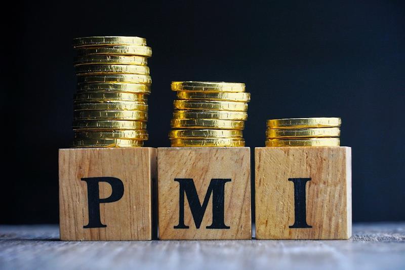 Cubi di legno con le lettere PMI e delle monete