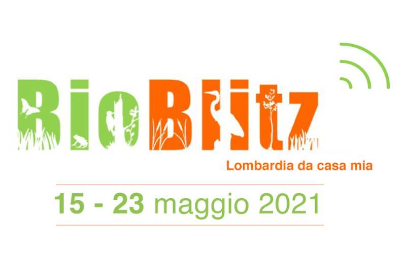Logo di BioBlitz