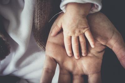 Mani di genitore e bambino